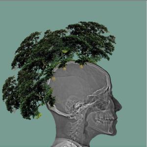 punk tree1